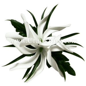 CMS-060 Custom Made Flower Hairpiece, White Foam Tiare (BU) Hair Clip