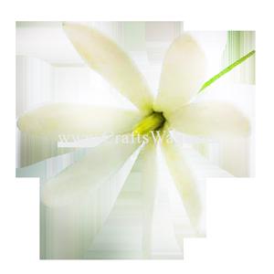 CYH-201 Artificial Clay Flower, Tiare Hair Pick