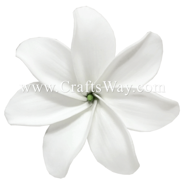 FSH458 Artificial Foam Flowers, Foam Tiare Type CI, 3 ¼ inches White Tiare with green core